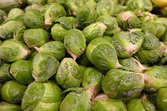 brussel-sprouts-92240_640